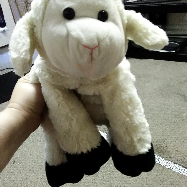 6dd3df7911c Best Little Lamb Big Beanie Baby for sale in Beeville