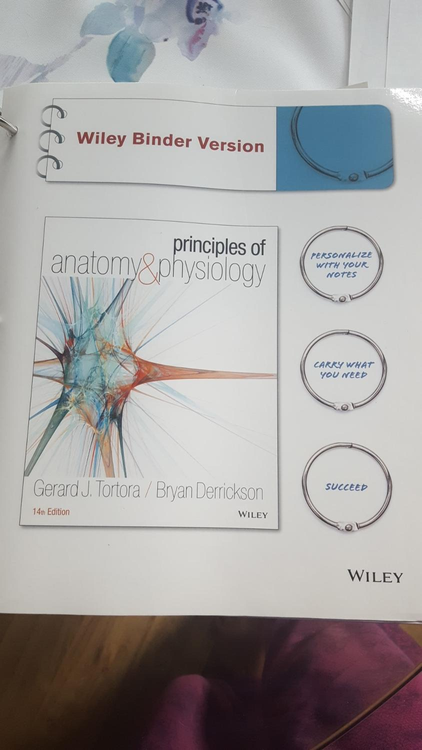 Best Kin 260 Textbook Principles Of Anatomy And Physiology Wiley for ...