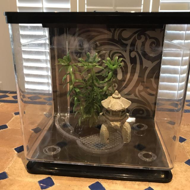 7aea7e66028 Find more Ez Care Betta Fish Tank for sale at up to 90% off