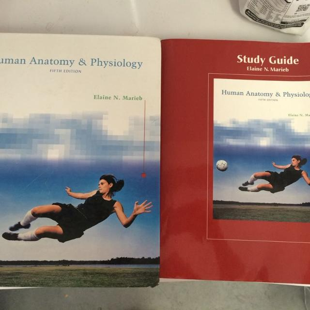Best Human Anatomy And Physiology Book And Study Guide for sale in ...