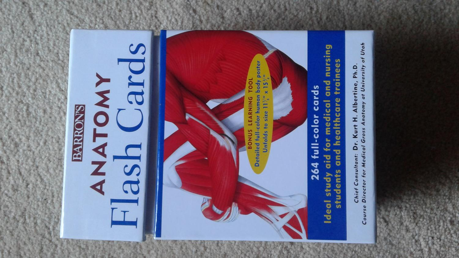 Find More Anatomy Flash Cards For Sale At Up To 90 Off