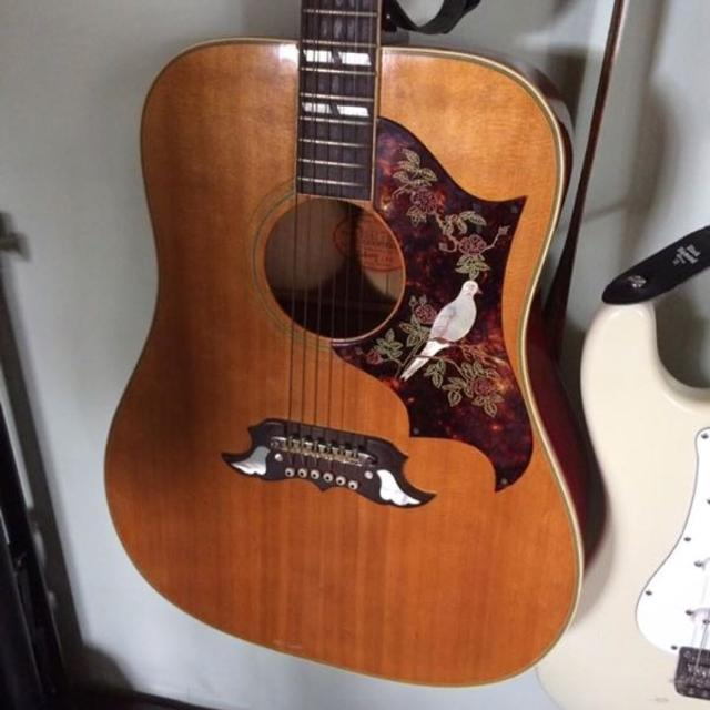 Best 1968 Gibson Dove Acoustic Guitar For Sale In Jacksonville Florida 2019