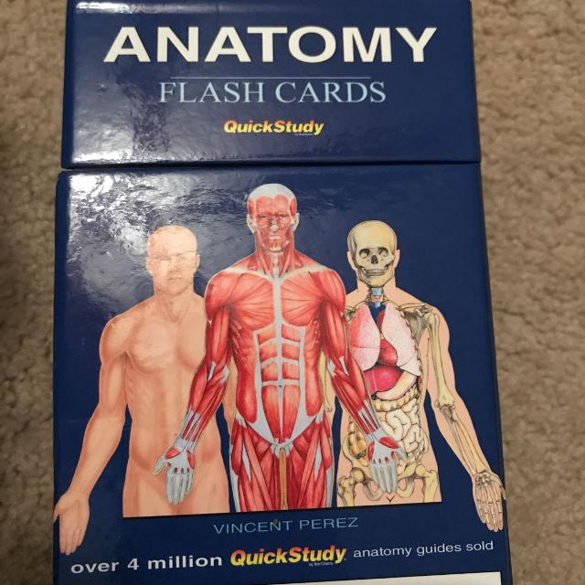 Find More Anatomy And Physiology Flash Cards For Sale At Up To 90 Off
