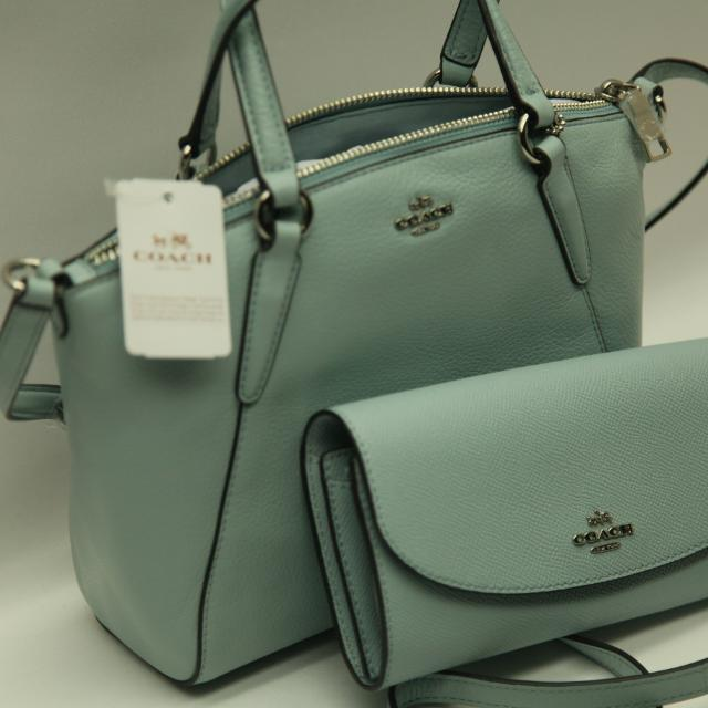 a7ae81746ead Find more Nwt Coach Mini Kelsey In Aqua Pebble Leather   Wallet ...