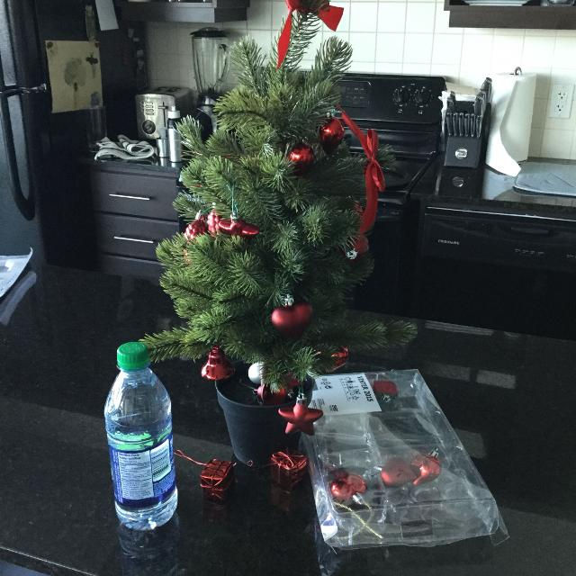 Best Ikea Mini Christmas Tree for sale in Oshawa, Ontario ...