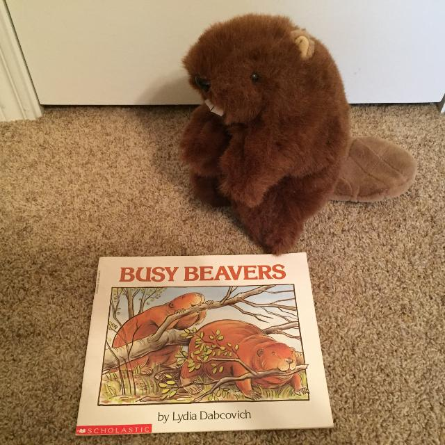Busy Beavers paperback & large beaver hand puppet - both excellent  condition REDUCED