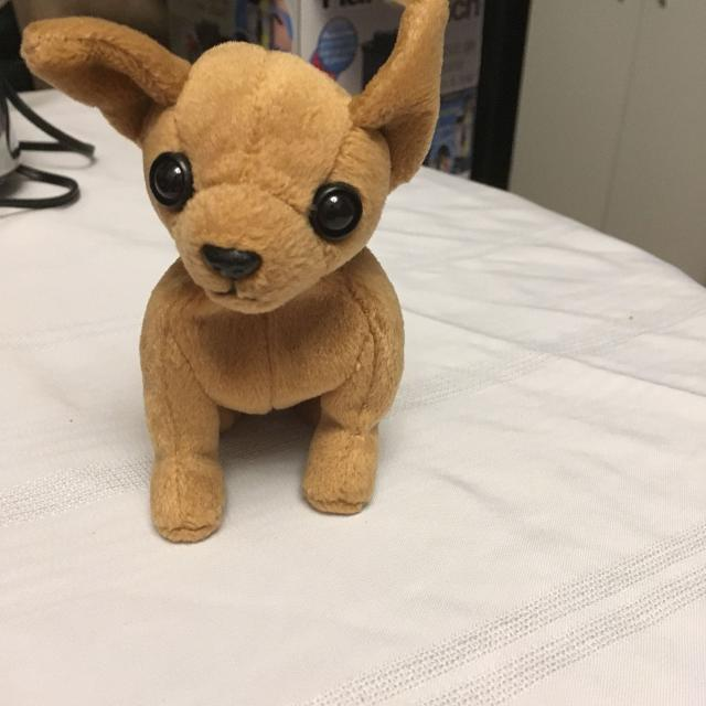 Find more Chihuahua Ty Beanie Baby for sale at up to 90% off 062230edb9ec