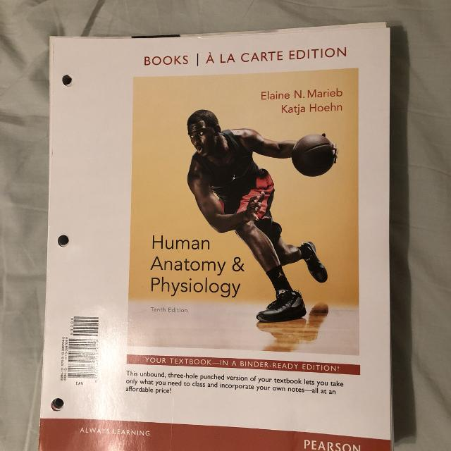 Best Pearson Human Anatomy And Physiology 10th Edition For Sale In