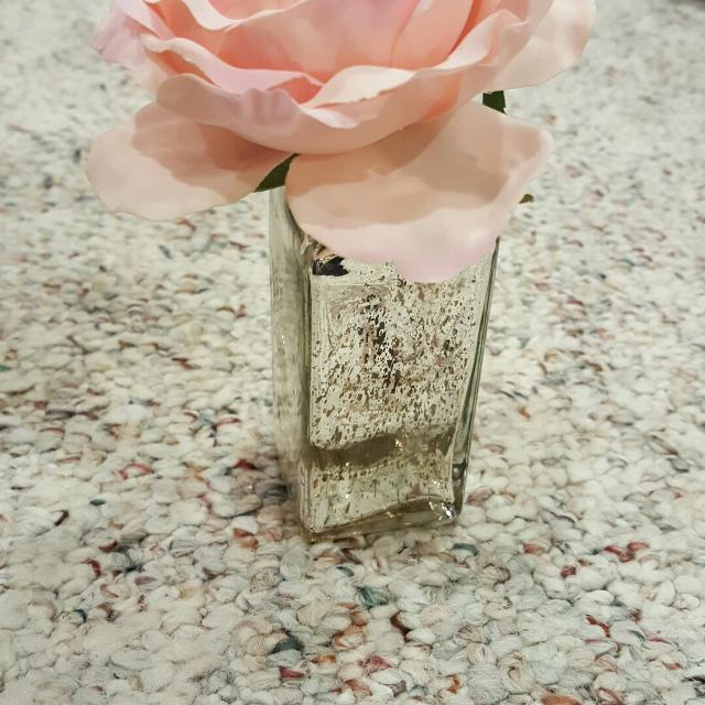 Best Vase With Single Flower For Sale In Appleton Wisconsin For 2018