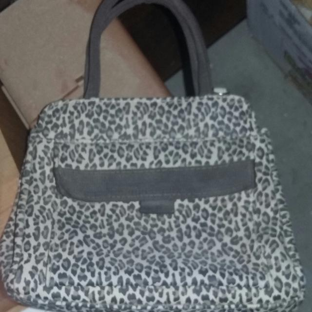 Small Cheetah Print Purse