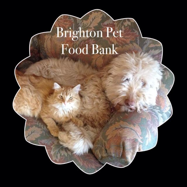 Brighton Pet Food Bank Open To Everyone In Cobourg Ontario