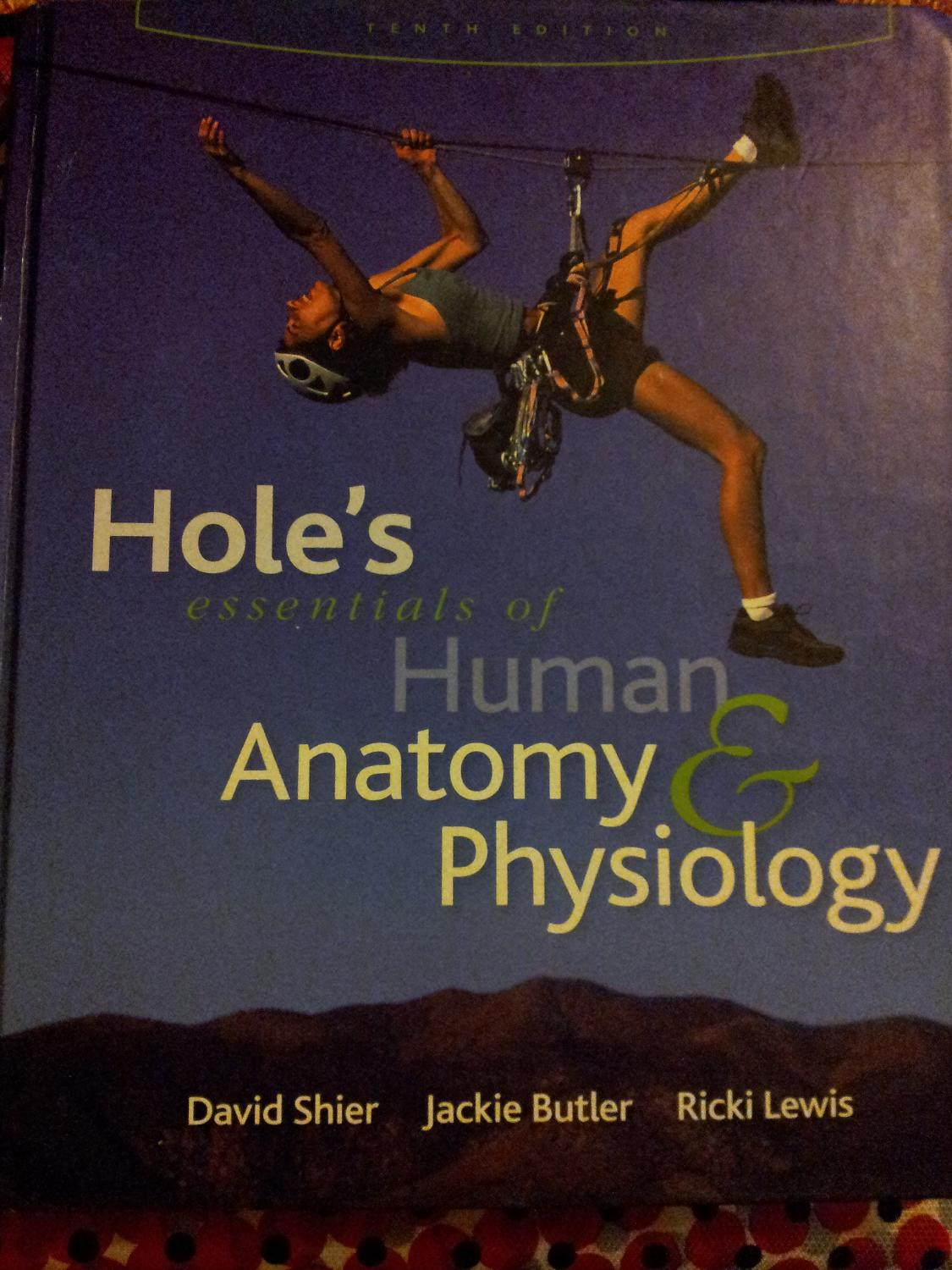 Find More Holes Essentials Of Human Anatomy Physiology 10th