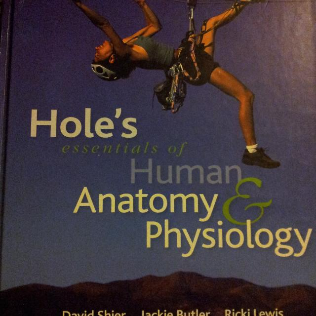 Find more Holes Essentials Of Human Anatomy & Physiology 10th ...