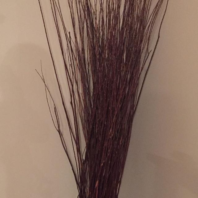 Best Willow Branches In Glass Vase For Sale In Camrose Alberta For 2018