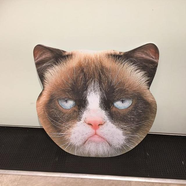 Find more Grumpy Cat Mask for sale at up to 90% off cd191bbc8879