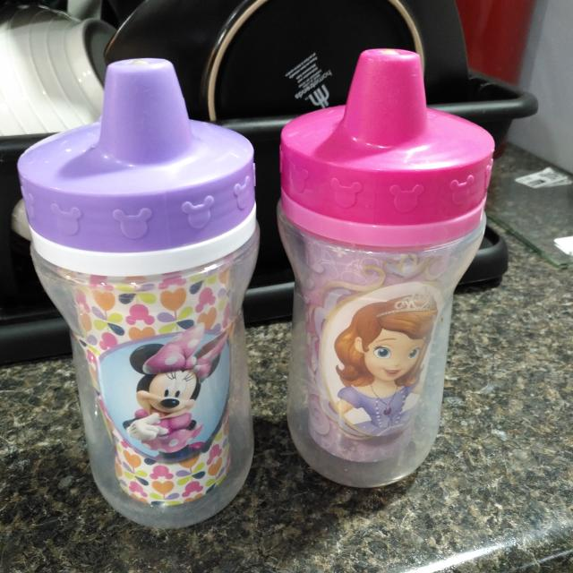 Two Girls Sippy Cups