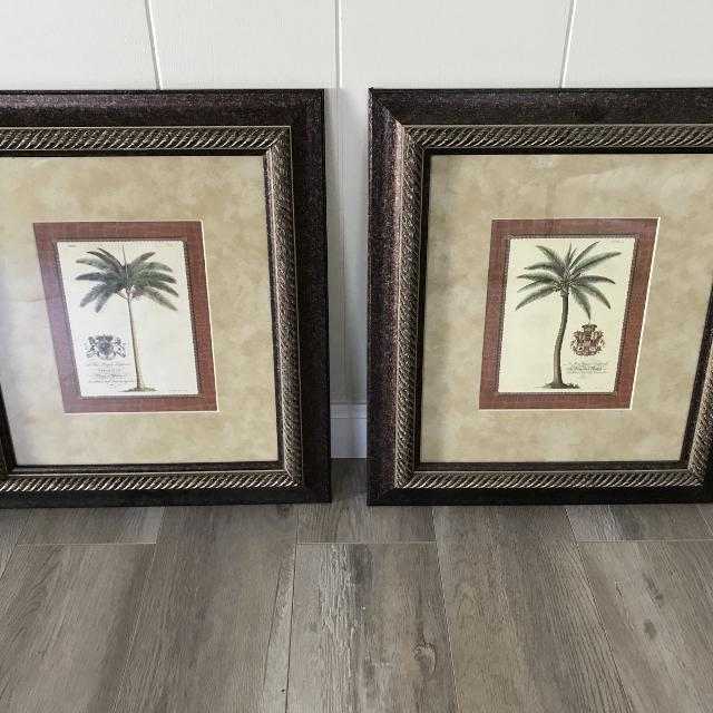 Best Beautiful Set Of Palm Tree Pictures In Frames For Sale In Palm