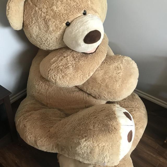 best giant costco teddy bear for sale in prince albert saskatchewan for 2019. Black Bedroom Furniture Sets. Home Design Ideas