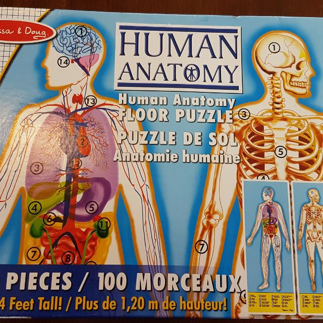 Find more Melissa And Doug 100 Piece Double Sided Human Anatomy ...