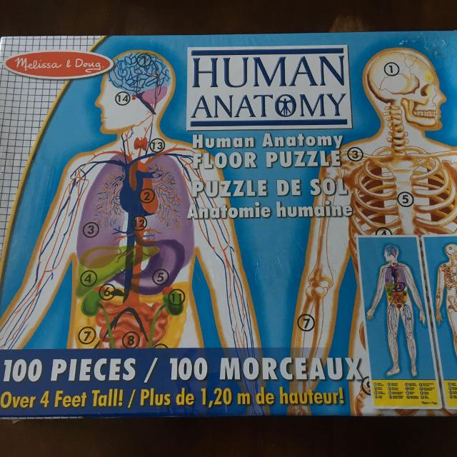 Find more Human Anatomy Puzzle for sale at up to 90% off