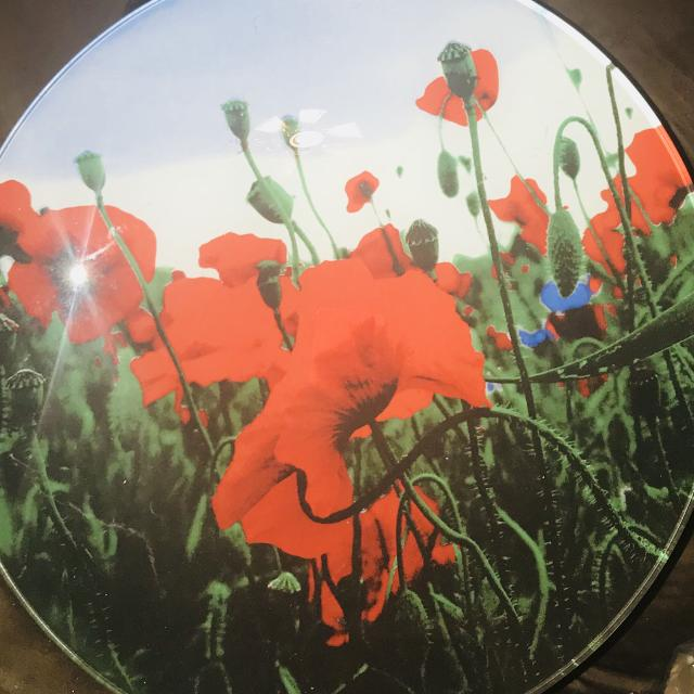 Find more red poppy flowers large bowl decor for sale at up to 90 off red poppy flowers large bowl decor mightylinksfo