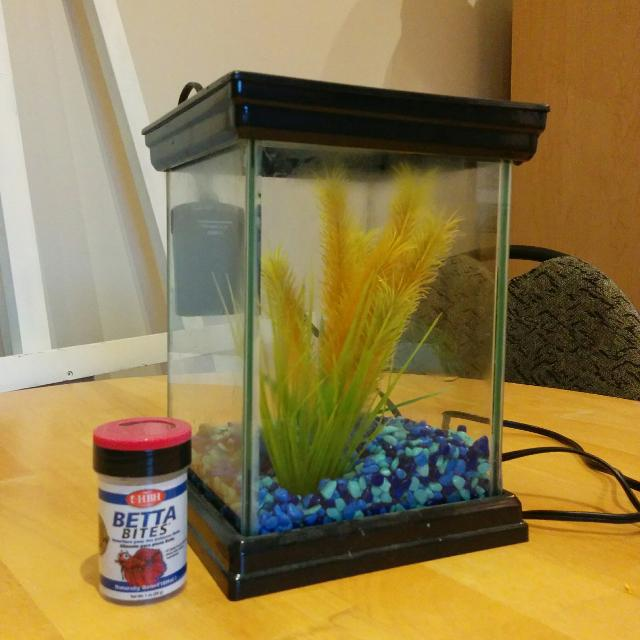 11d00972658 Find more  reduced  1 Gallon Betta Fish Tank for sale at up to 90% off
