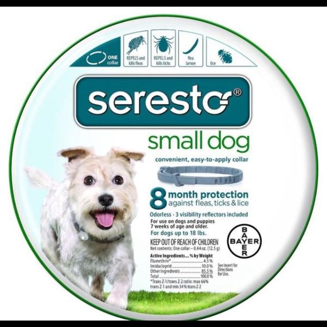 Best Seresto Small Dog Collar For Sale In Pittsburgh Pennsylvania