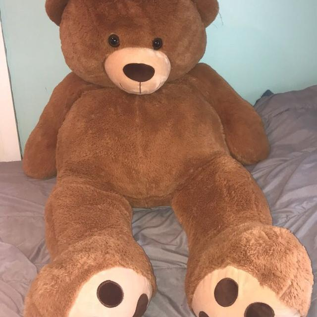 best giant teddy bear for sale in dekalb county illinois for 2019. Black Bedroom Furniture Sets. Home Design Ideas
