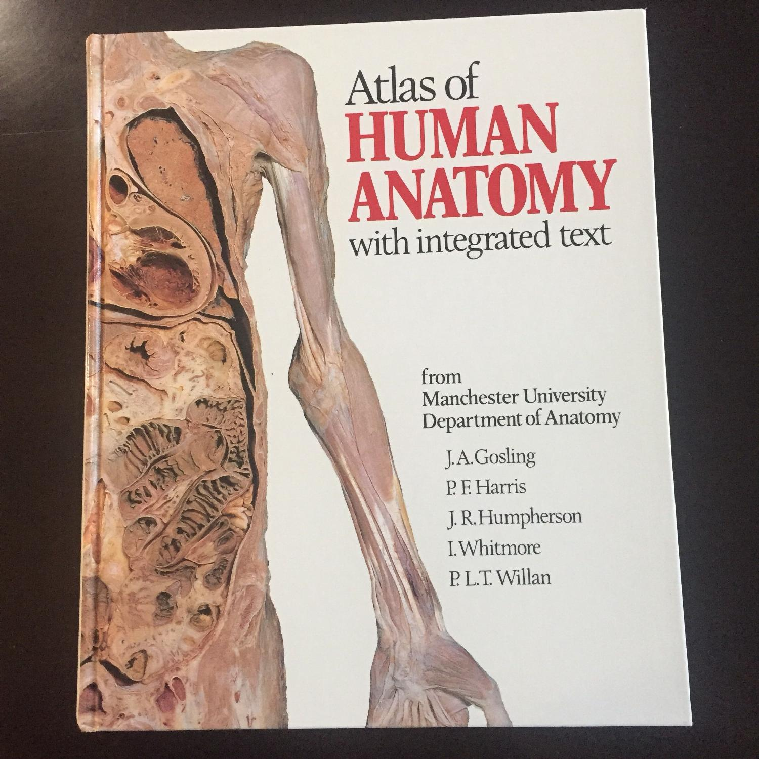 Find more Atlas Of Human Anatomy for sale at up to 90% off
