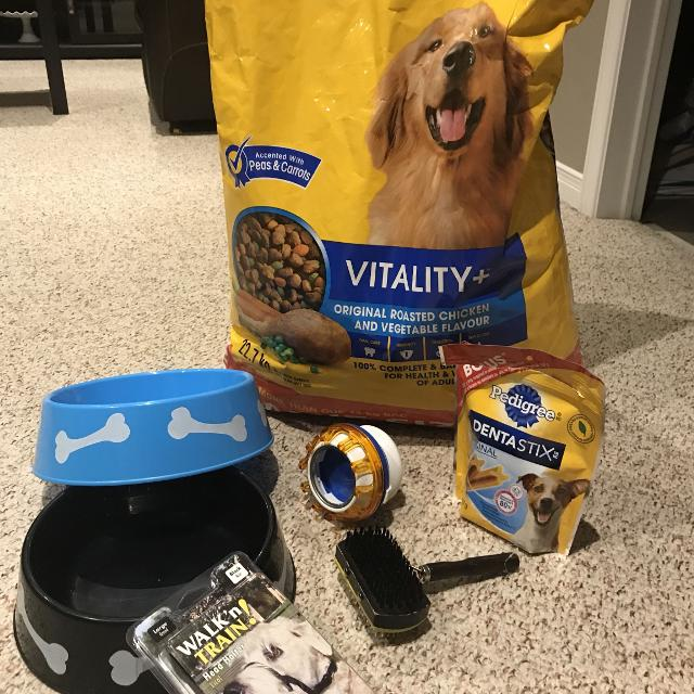 a34a14731c1f6 Best Dog Items for sale in Ajax