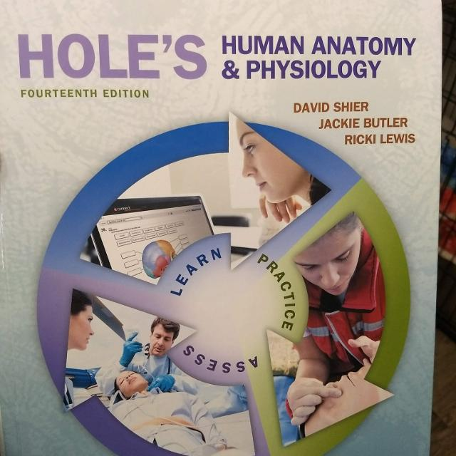 Find more Hole\'s Human Anatomy & Physiology 14th Edition for sale at ...