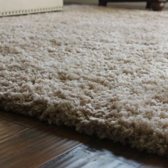Costco Cream Shag Rug 8x10
