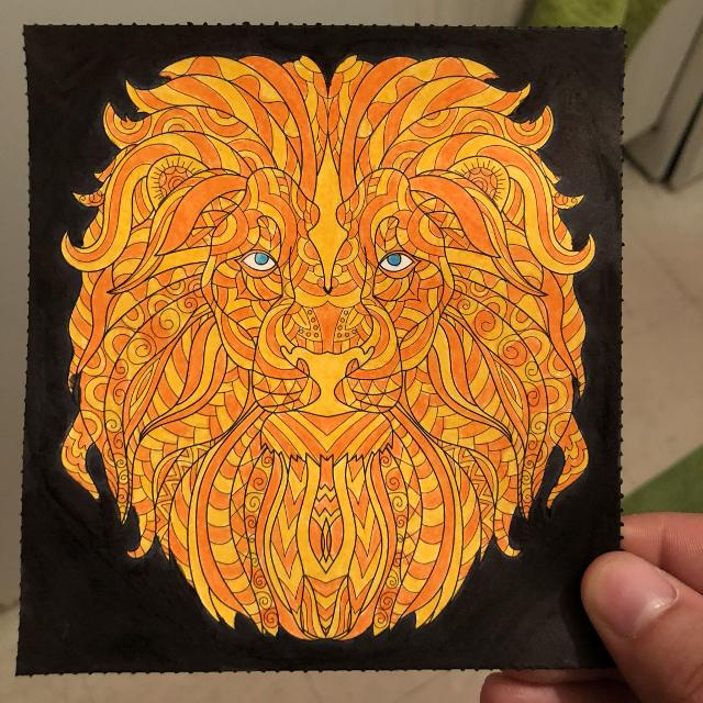 Best Lion Drawing Art Picture For Sale In Oshawa Ontario For 2019