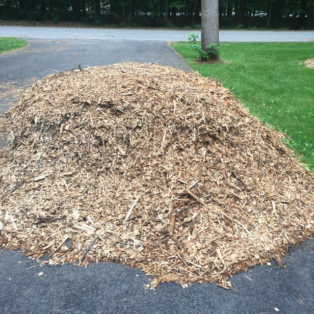 Find More Free Mulch Cedar Chips For Sale At Up To 90 Off