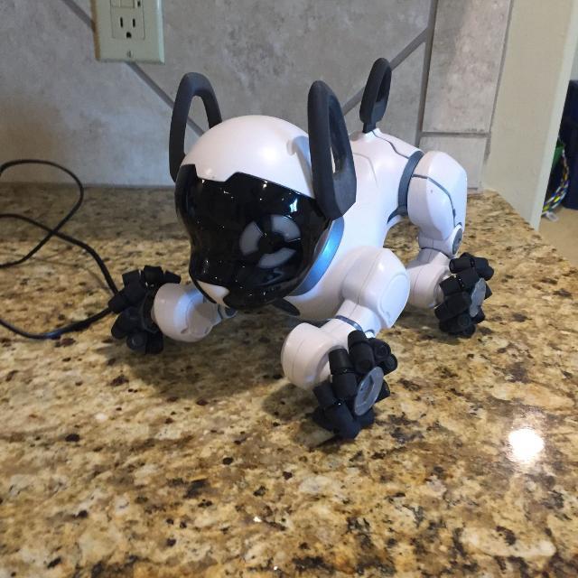 Chip - interactive robot dog