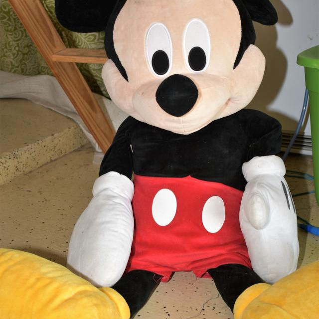 Best Giant Mickey Mouse For Sale In Brazoria County Texas For 2019