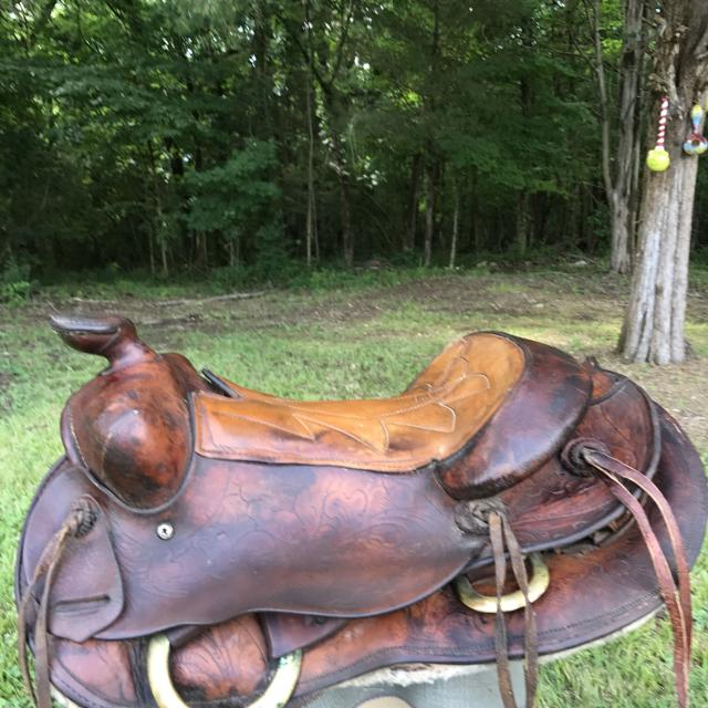 Best Saddle King Of Texas For Sale In Maury County Tennessee For 2019