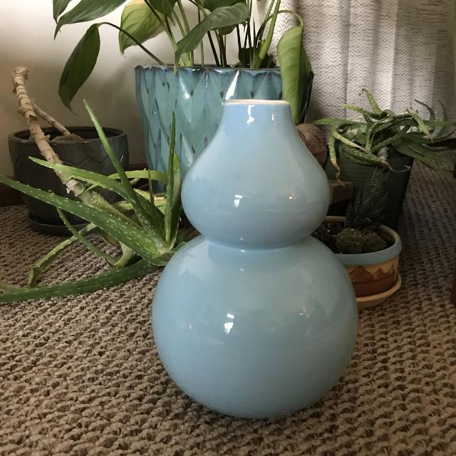 Best Home Goods Vase For Sale In Dekalb County Illinois For 2018