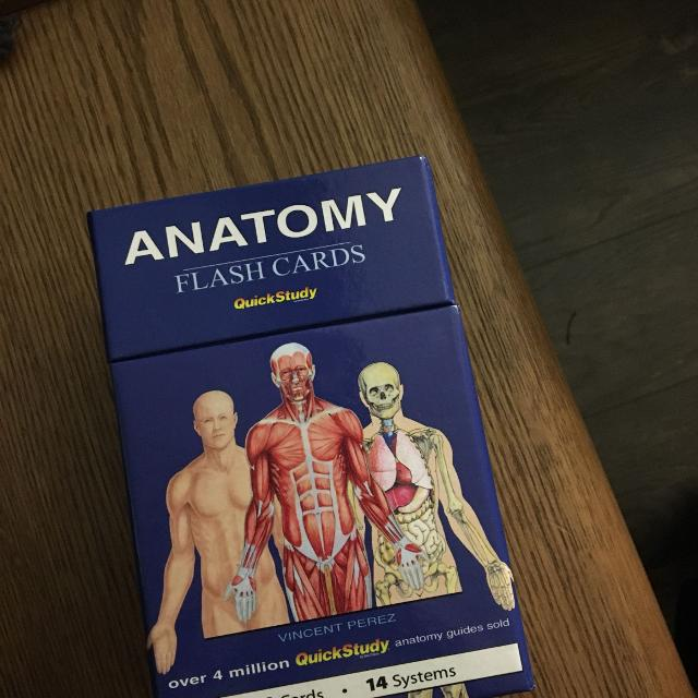 Quick Study Anatomy Flash Cards Image Collections Human Anatomy