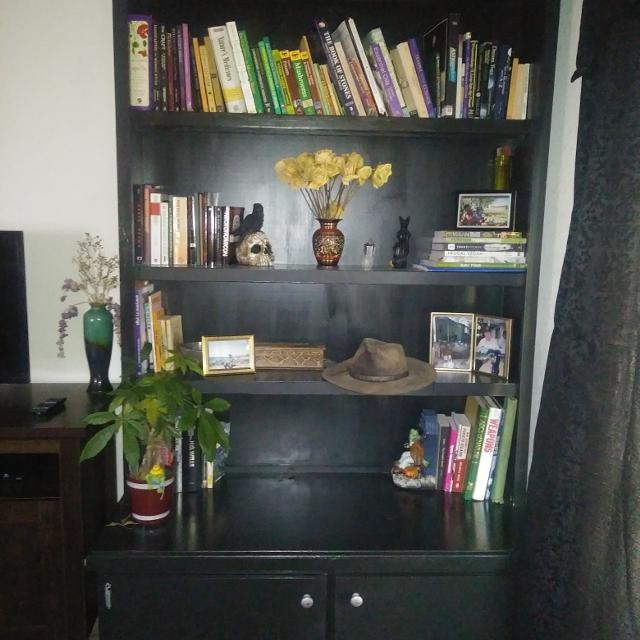 info for 1f34d e4fde Heavy duty black handpainted bookshelf