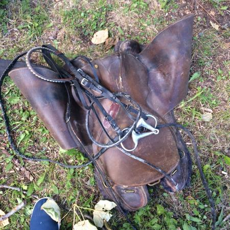Used, English saddle and bridle for sale  Canada