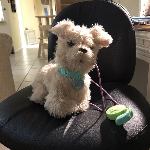 Best Furreal Friends Go Go Puppy For Sale In West Palm Beach