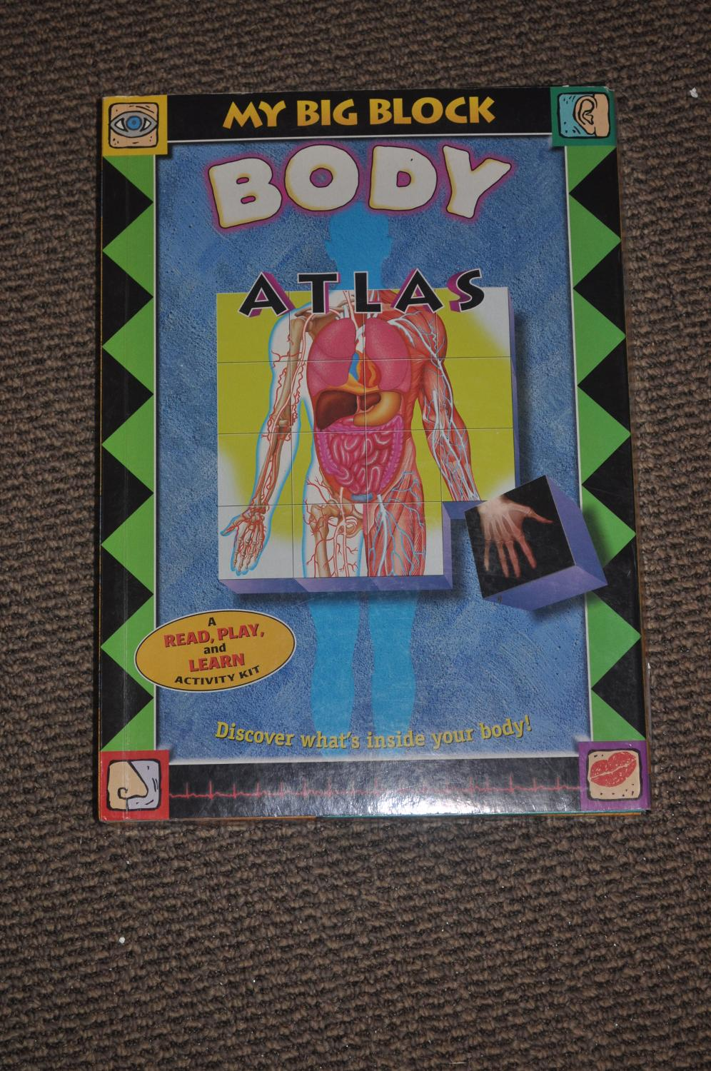 Best My Big Block Body Atlas A Ready Play And Learn Activity Kit