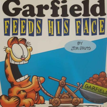 Garfield Feeds his face comic book for sale  Canada