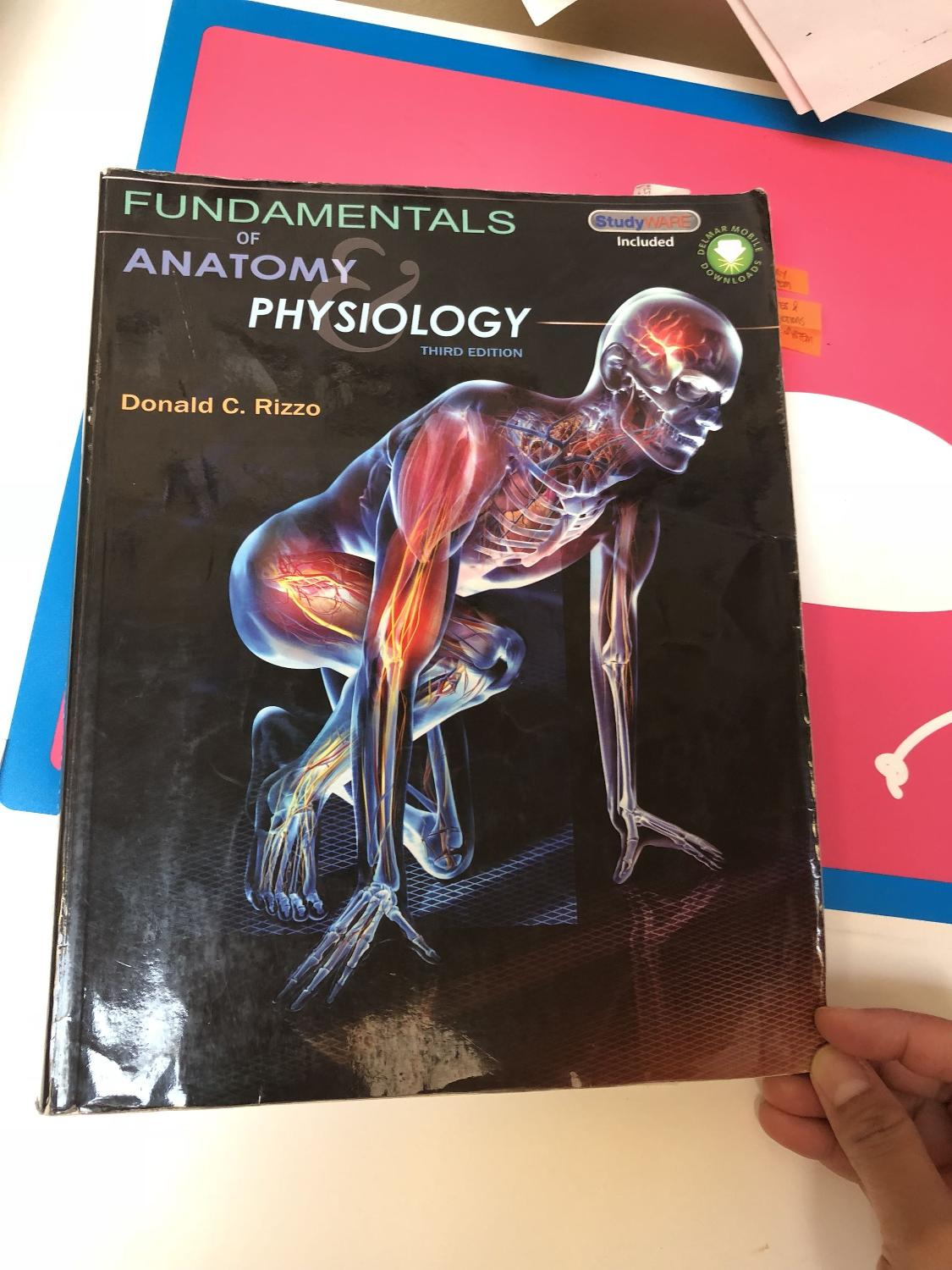 Best Fundamentals Of Anatomy Physiology 3rd Edition. for sale in ...