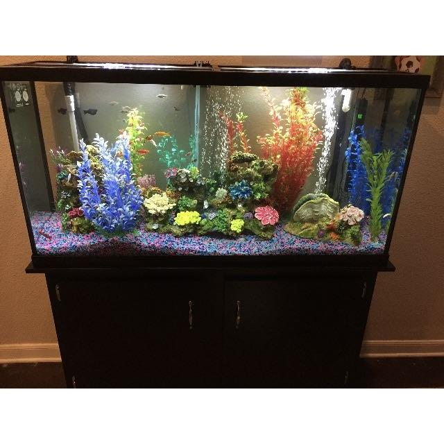 Amazing! 65 gallon Fish tank, with everything you need 48x13x25 tank  stand  50x14x30  all together 48x14x55