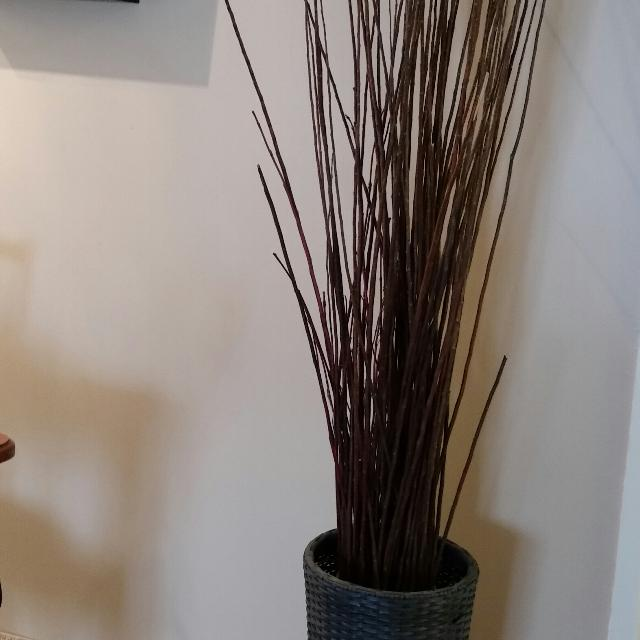Find More Large Vase With Sticks For Sale At Up To 90 Off