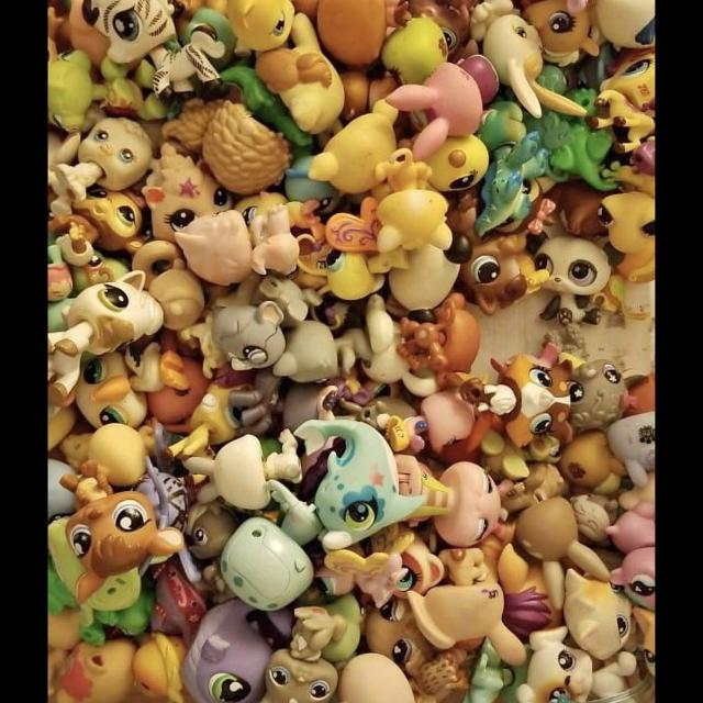 Looking For: Looking for Littlest Pet Shop characters. in Prosper ...