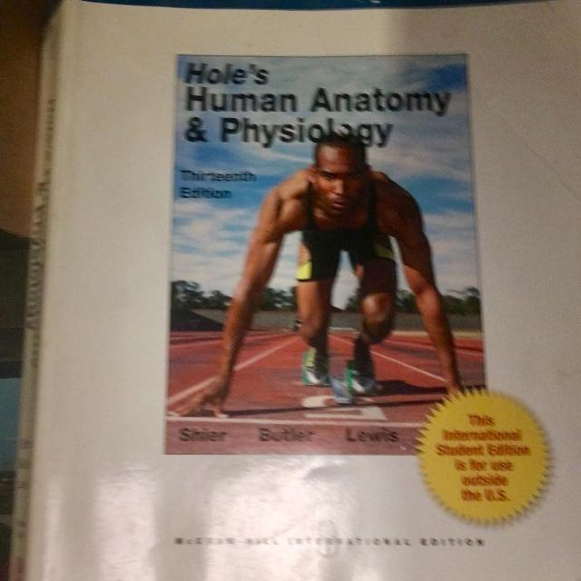 Best Hole\'s Human Anatomy & Physiology College Textbook for sale in ...