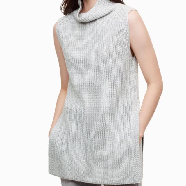 a0ba81b1538d3 Best Aritzia Wilfred Durandal Sleeveless Sweater for sale in Etobicoke